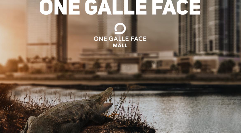 marino-mall-crocodile promobox promotion image 3